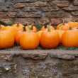 Pumpkins stone wall - ストック写真