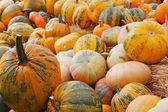 Pumpkins on haystacks — Stock Photo