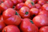 Pile of tomatoes single focus — Stock Photo