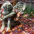 Autumn Angel — Stock Photo #4347483