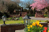 Bright and Pretty Colours of an English Country Garden in Spring — Stock Photo