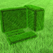 Stock Photo: Green grass computer