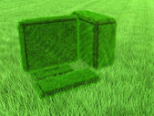 Green grass computer — Stock Photo