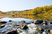 Autumn on the river — Stock Photo