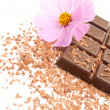 Chocolate with flower — Stock Photo