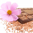 Chocolate with flower - Foto Stock