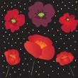 Seamless pattern with red poppies on black background — Stok Vektör