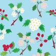 Seamless pattern with officinal hawthorn - Stock Vector