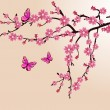 Cherry blossom — Vector de stock #5065317