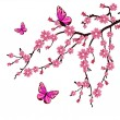 Cherry blossom — Vector de stock #5246556