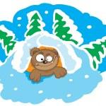 Bear in the den — Stock Vector #3992354