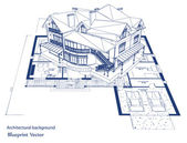 Architecture Blueprint Of A House. Vector — 图库矢量图片
