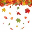 Autumn Bright Leaves — Stock Vector