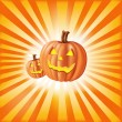 Pumpkins Against Sun Rays — Stock Vector