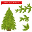 Collection Of Tree Elements — Stock Vector