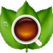 Cup With Tea And Green Leaves — Stock Vector #4329432