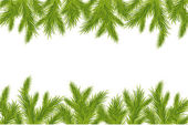 Branch Of Green Christmas Tree — Stock Vector