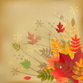 Autumn Vintage Background — Stock Vector