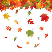Autumn Bright Leaves — Vector de stock