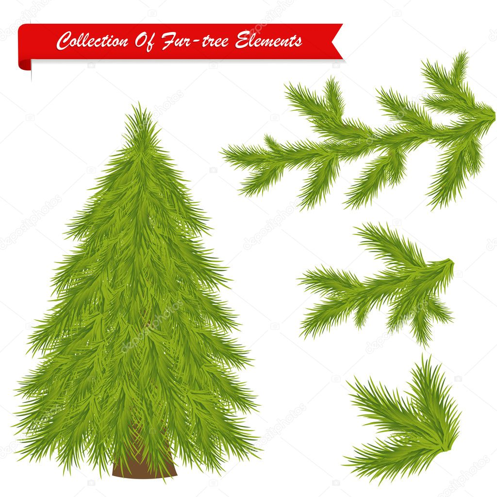 Collection Of Fur-tree Elements, Isolated On White Background, Vector Illustration — Stock Vector #4329248