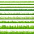 Stock Vector: Big Set Grasses