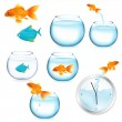 Fish And Aquariums — Stock Vector