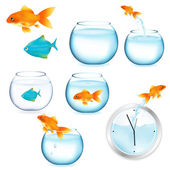Fish And Aquariums — Stockvector