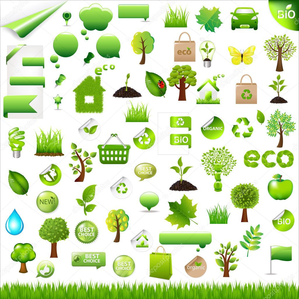 Collection Eco Design Elements, Isolated On White Background, Vector Illustration — Stock Vector #4697732