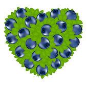 Coeur de myrtille — Vecteur