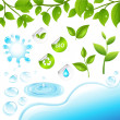Collection Of Green Branches And Water Elements — Stock Vector