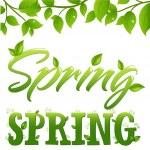 Spring — Stock Vector #4819160