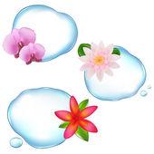Flowers In Water — Stock Vector