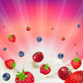 Berry Mix — Stock Vector