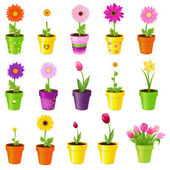 Blommor i krukor — Stockvektor