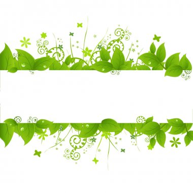 Green Leafs And Grass