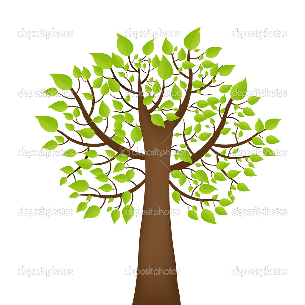 Tree With Green Leafage,  Isolated On White Background, Vector Illustration  Stock Vector #5290889