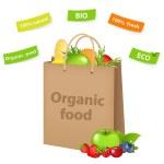 Bag With Organic Food — Stock Vector #5337441