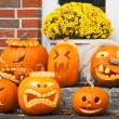 Six halloween pumpkin - Stock Photo