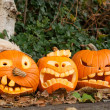 Royalty-Free Stock Photo: Three halloween pumpkin
