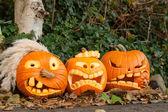 Three halloween pumpkin — Stock Photo
