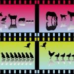 muitos grupos de animais — Vetor de Stock  #4022402