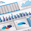 Annual Report. Graph. Diagram. Chart. Analisys. — Stock Photo