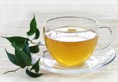 Fresh Green Tea — Stock Photo