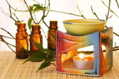 Aroma Oil Bowl and Bottles — Stock Photo