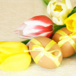 Easter Brown Eggs and Colorful Tulips — Stock Photo