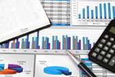 Report in Charts and Graphs — Stock Photo
