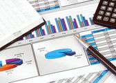 Business Still Life with Graphs — Stock Photo