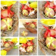 Royalty-Free Stock Photo: Easter Collage Square
