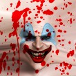 Skin Face Clown — Stock Photo #4381734