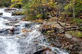 Wasserfall im herbst — Stockfoto